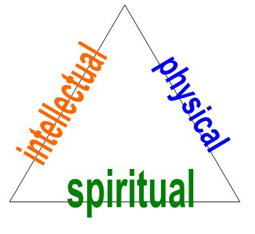 Critical Thinking: Triangle Philosophy