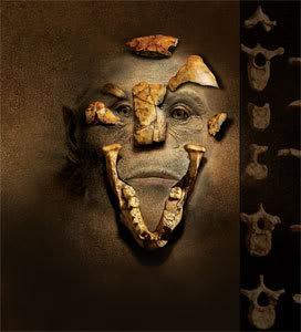 Face of Darwinism
