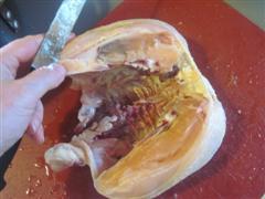 breast cavity revealed