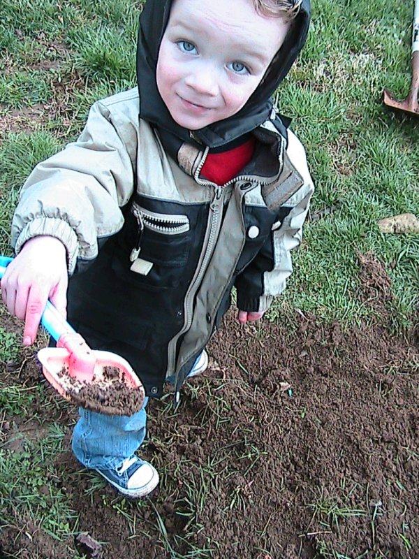 Gardening: Breaking New Ground