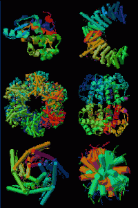 Creation: Various Proteins