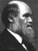 Creation: Charles Darwin-age 58