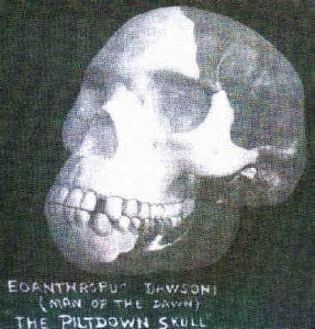 Creation: Piltdown Skull I
