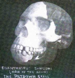 Creation: Piltdown Skull I