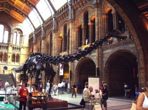 Creation: Brontosaurus Skeleton (Yale)