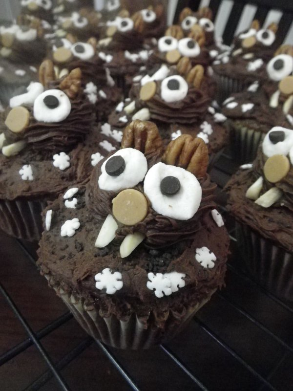 Chocolate Groundhog Day Cupcakes