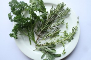 parsley sage rosemary thyme