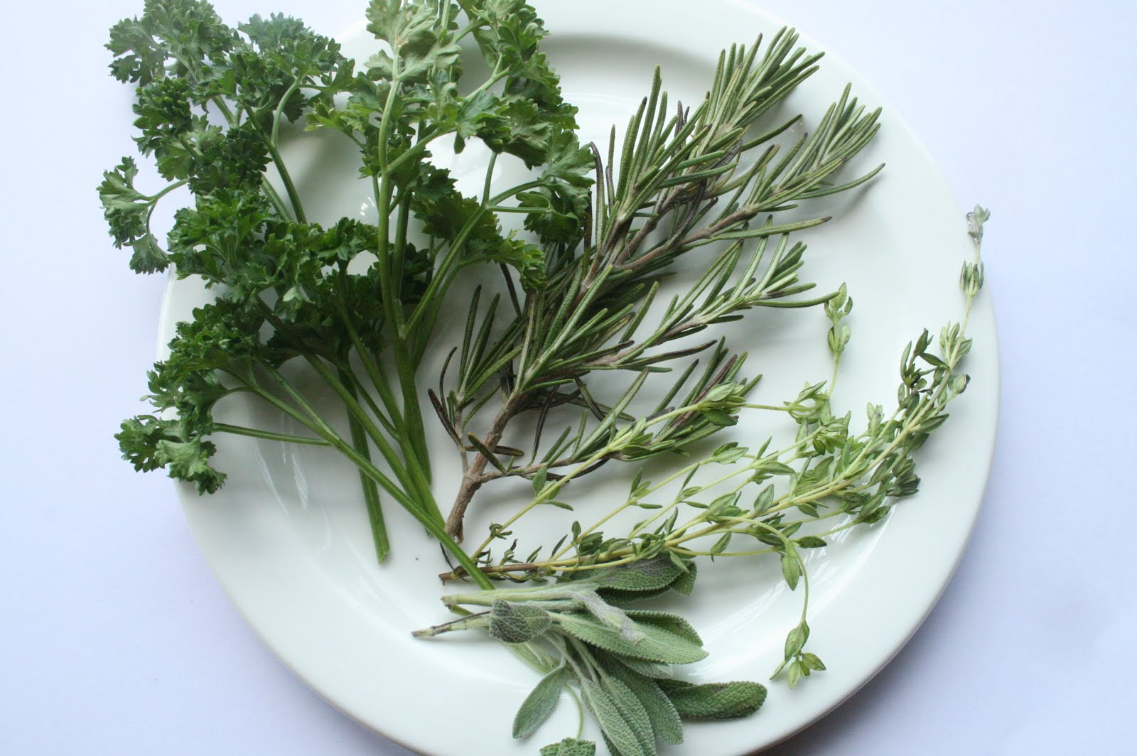 Italian Seasoning or Rub (Parsley, Sage, Rosemary & Thyme)